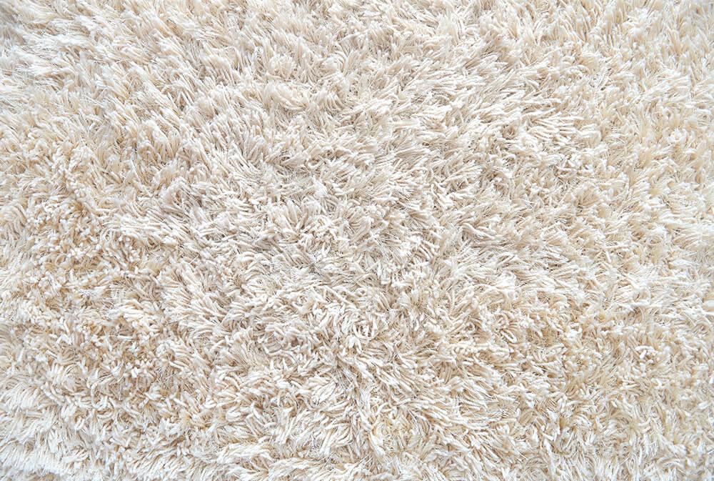Carpet Cleaning Cotati Ca North American Chem Dry