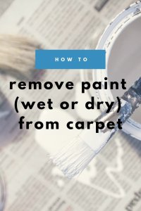 how to remove paint (wet or dry) from carpet