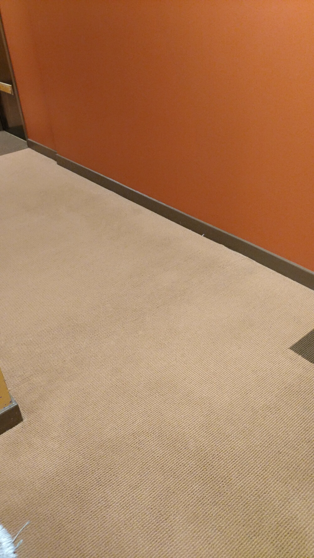clean office carpet in sonoma
