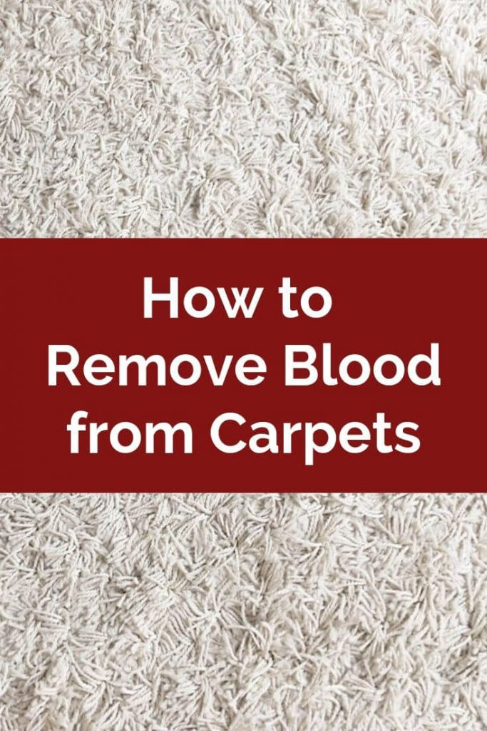 Remove blood stains from your carpet with North American Chem-Dry