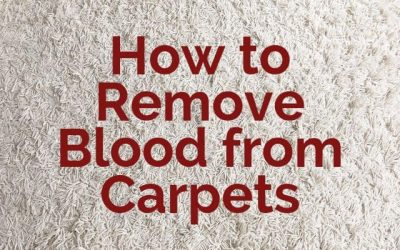 How to Remove Blood from Carpets