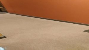 After carpet cleaning