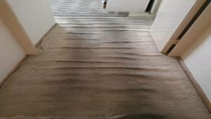 messy and stained carpet