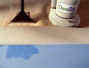 Chem-Dry vs steam carpet cleaning