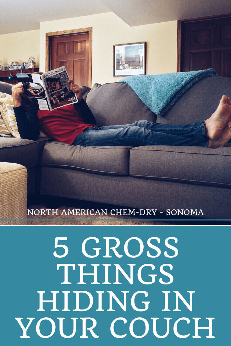 deep clean your couch in santa rosa