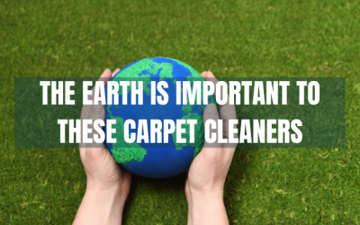 The Earth is Important to these Carpet Cleaners